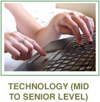 Technology (mid to senior level)